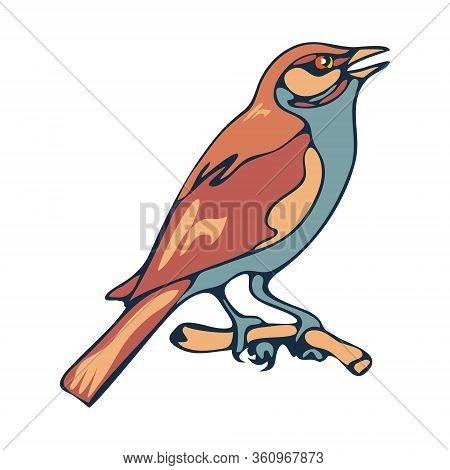 Sparrow Bird Sitting On A Branch, Vector Illustration , Flat Style.