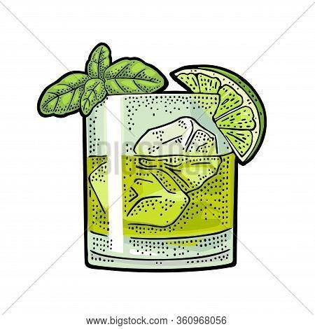 Glass Cocktail Gin Basil Smash. Vintage Color Vector Engraving