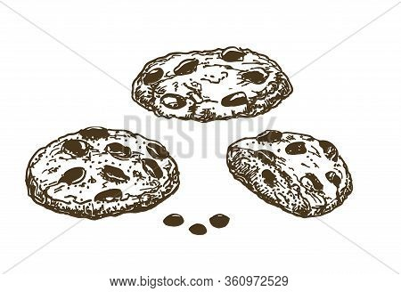 Chocolate Chip Cookies. Sketch Ink Graphic Cookies Set Illustration, Black On White Line Art. Hand D