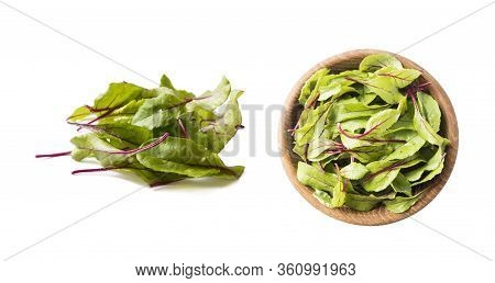 Sweet Beet Leaves(mangold) Isolated On White Background. Top View. Leaves Of Baby Chard. Sweet Beet