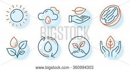 Refill Water, Fair Trade And Startup Signs. Leaf, Sunny Weather And Rainy Weather Line Icons Set. Pe