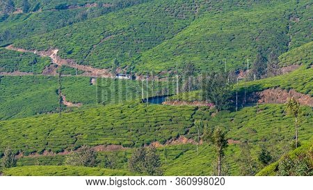 A View Of The Long Winding Roads Along The Tea Plantations Of Munnar.