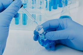 Scientific Laboratory Equipment. Hands Of A Scientific Researcher In Blue Gloves
