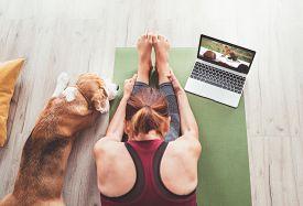 Active, Adult, Animal, Asana, Athlete, Athletic, Beagle, Body, Breathing, Caucasian, Computer, Dog,