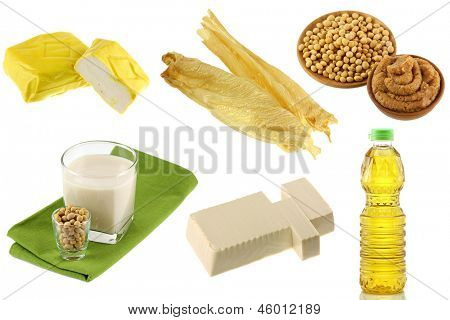 Different Soybean (Soya beans) Products - Yellow Tofu, Tofu Skin, Miso Paste, Soy Milk, Soft Momen (Cotton Tofu), Soybean oil poster