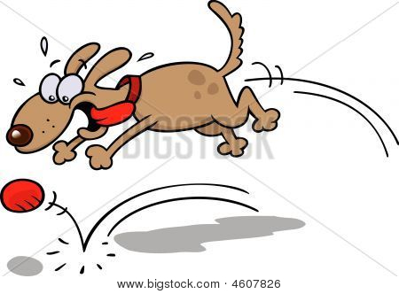 Dog Chasing A Red Ball