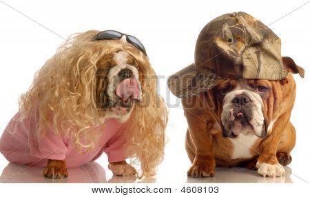 Ugly Bulldog Couple
