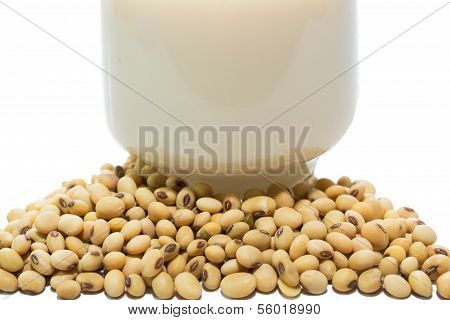 Soymilk and soy beans over white background