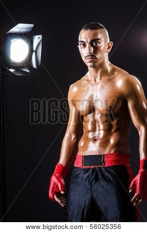 Boxer and studio lights