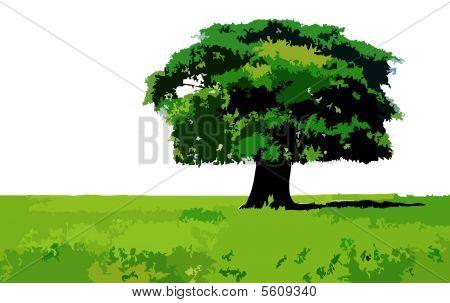 tree the fantastic scenery