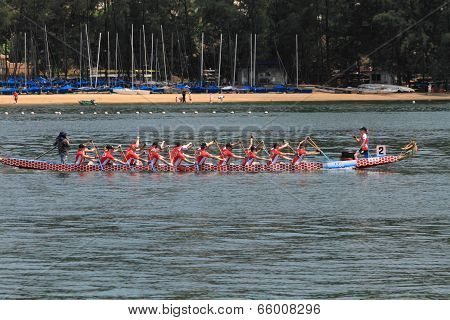 dragon boat race at discovery bay