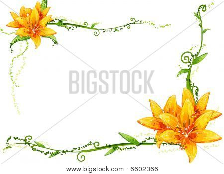 Yellow Flower And Vines