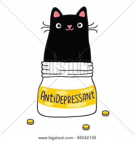 Cat And Antidepressant.