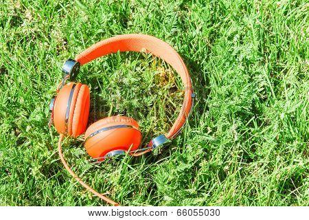 Bright Orange Colorful Headphones On Fresh Sward