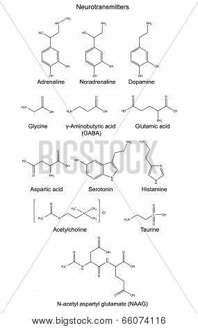 Structural Chemical Formulas Of Basic Neurotransmitters