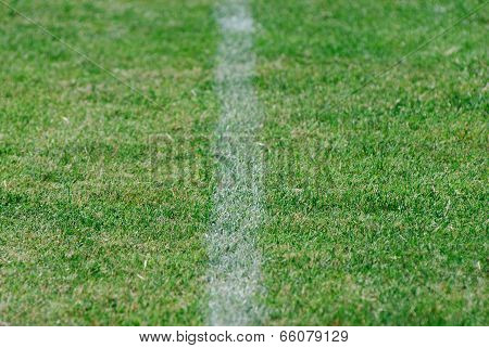 Green Football Field With Shallow Depth Of Field