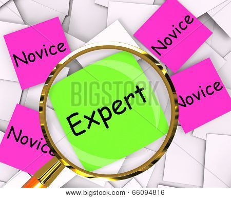 Expert Novice Post-It Papers Meaning Experienced Or Inexperienced poster