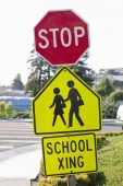School Crosswalk With Stop Sign and School Xing Signs poster