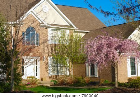 Home In Spring
