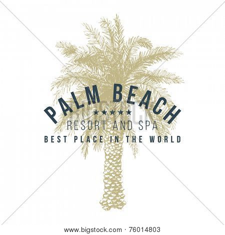 palm beach logo template with hand drawn palm tree