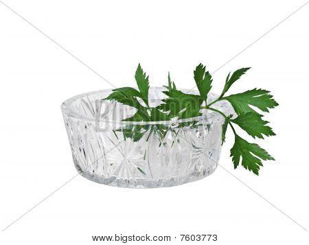 Crystal Vase And Greens