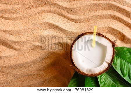 Coconut On The Sand Beach
