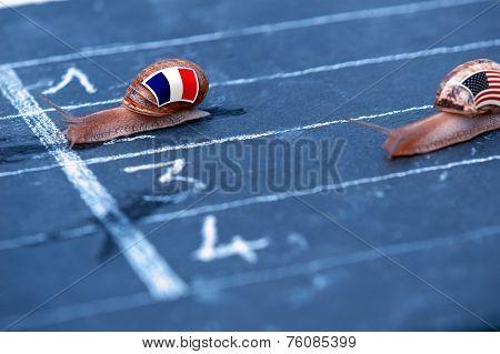Snails Race Metaphor About France Against Usa