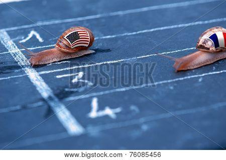 Snails Race Metaphor About Usa Against France