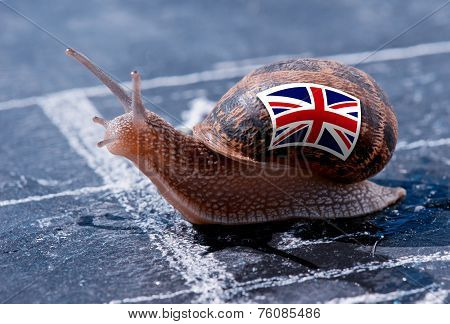finish line winning of a snail with the colors of England flag poster