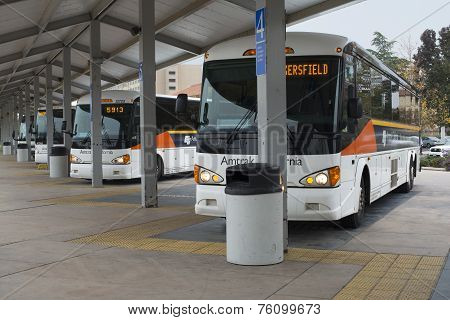 Amtrak Buses