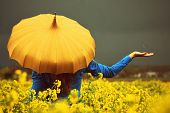 A girl standing in a yellow turnip field holding a yellow vintage umbrella while the rain falls into her hand. poster