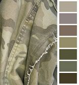 closeup of the camouflage cloth complimentary color chart selection poster