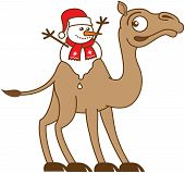 Cute Christmas snowman with red scarf and Santa hat melting while seated between the two fatty humps of the back of a very surprised and worried brown camel poster