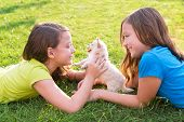 twin sister kid girls and puppy dog happy playing with pet lying in backyard lawn poster