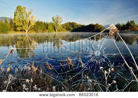 Frozen Web by Morning Autumn lake