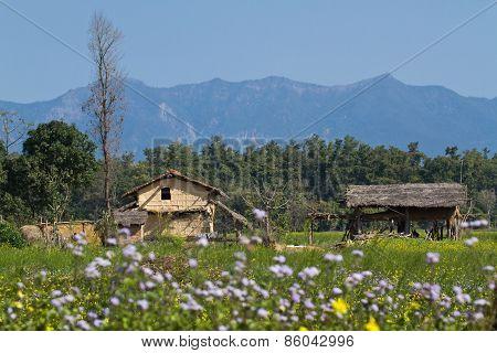 Landscape and traditional village in Terai, at Thakurdwara, Bardia, Nepal