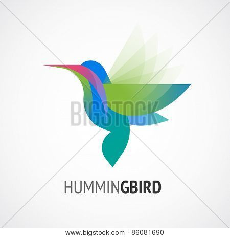 Tropical birds - humming bird vector icon
