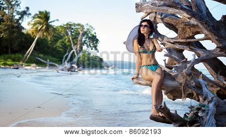 Beautiful Woman In Bikini And Sunglasses Is Sitting On The Snag On The Tropical Coastline Background