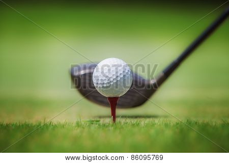Golf In Grass