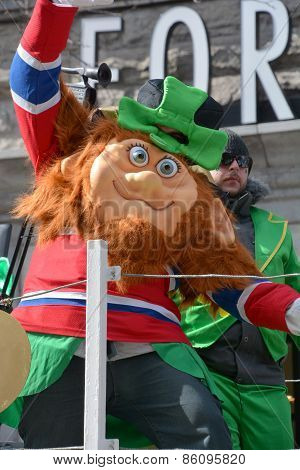 Participant at the annual Saint Patrick's Day