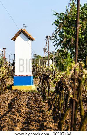 God's torture with vineyard near Nechory, Czech Republic