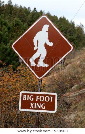 Beware Of Big Foot