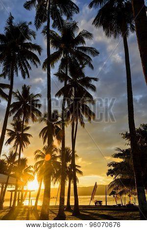 Asian Sunrise Resort