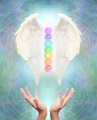 White Angel wings with seven chakras between on an intricate blue energy background and a pair of hands reaching up to the healing source poster