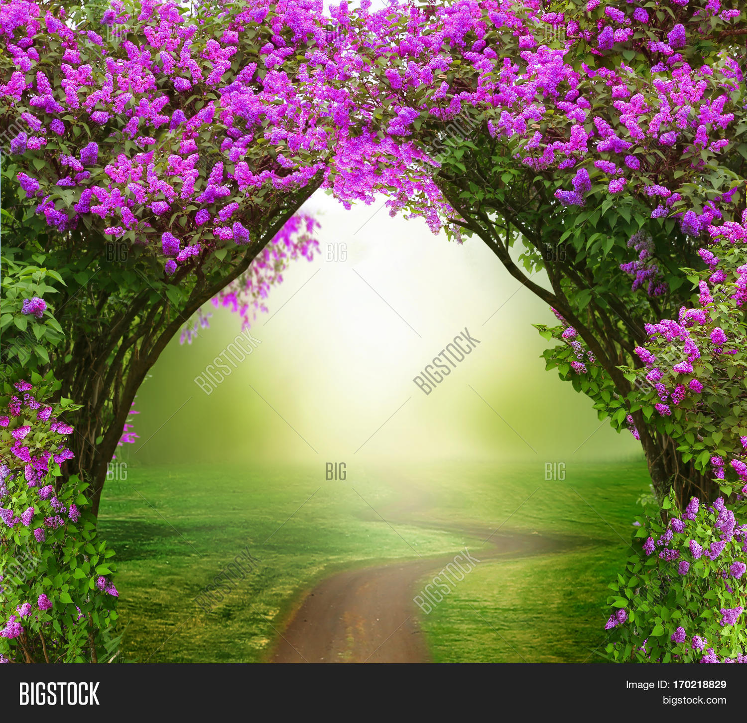 fantasy background . image & photo (free trial) | bigstock