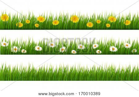 Big collection of green grass and flowers. Vector.