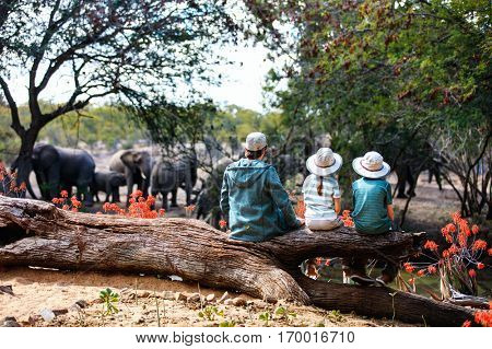 Family of father and kids on African safari vacation enjoying wildlife viewing at watering hole