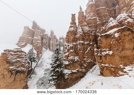 Snow storm and hoodoos at Bryce Canyon National Park in Southern Utah.