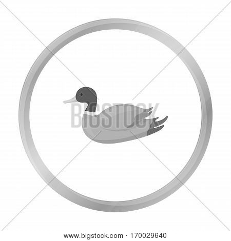 Duck icon in monochrome style isolated on white background. Hunting symbol vector illustration.