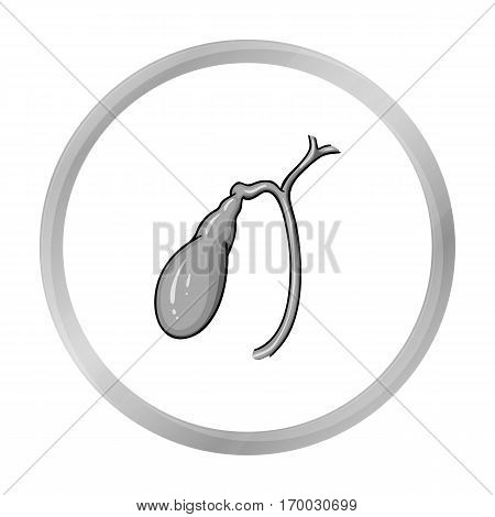 Human gallbladder icon in monochrome style isolated on white background. Human organs symbol vector illustration.